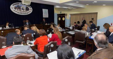 ECONOMÍA: Los Parlamentarios analizarán el régimen de promoción de la Industria del Software
