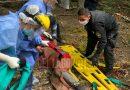 TOLHUIN: Trabajador maderero trasladado a Ushuaia al sufrir una caída en aprovechamiento forestal